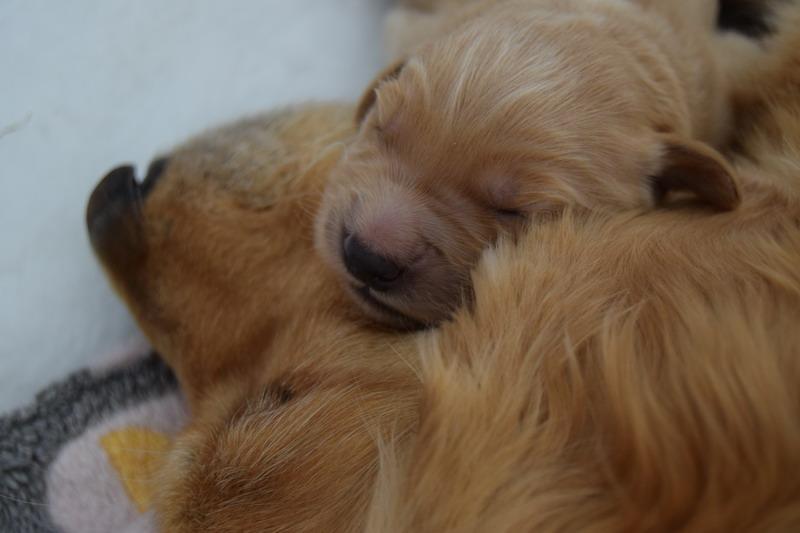 Er hat mit einem anderen mädchen geschlafen, während wir uns trafen